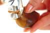 秋の香り!焼き栗の作り方の手順1