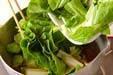 しろ菜の煮浸しの作り方3