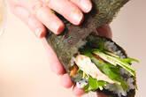 水菜・手巻きサラダの作り方2