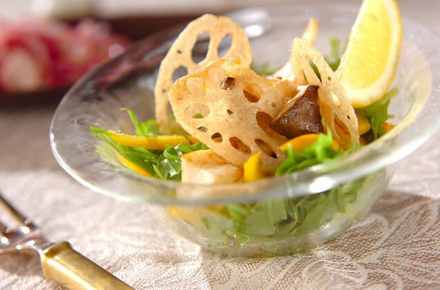 レンコンとエリンギのサラダ