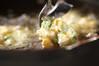 ぷちぷち!枝豆とコーンの落とし揚げの作り方の手順5