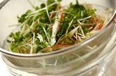 薬味野菜とシラスのサラダの作り方1