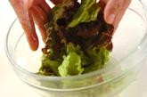 サニーレタスのサラダの作り方1