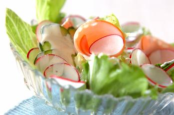 ラディッシュのサラダ