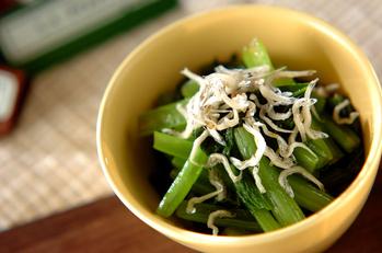 小松菜とジャコのお浸し