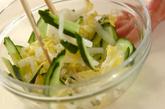 白菜のピリ辛甘酢和えの作り方1
