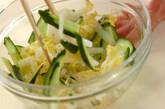 白菜のピリ辛甘酢和えの作り方4