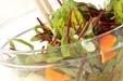 ベビーリーフのサラダの作り方1