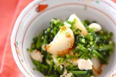 カブと豆腐の塩炒め