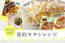 お金がない時の味方、モヤシを美味しく活用!簡単でお腹も満足できるお助けレシピをご紹介♪