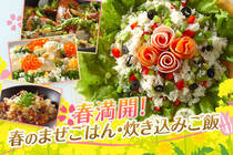 旬食材の菜の花やフキなどを使用した、春満開のご飯です。今日はちょっと特別な食卓にしてみませんか?