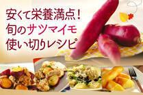 この時期安く手に入るサツマイモをふんだんに使ったレシピを紹介!節約もできて栄養満点、家計に嬉しい食材ですね♪