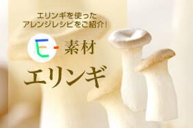 E-素材 エリンギ