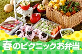 春のピクニックお弁当