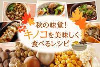 秋の味覚!キノコを美味しく食べるレシピ