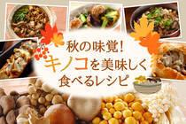 旬のキノコがたっぷり!キノコの旨味を存分に楽しめるレシピをご紹介