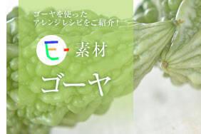 E-素材 ゴーヤ