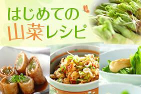 はじめての山菜レシピ