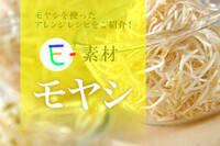 E-素材 モヤシ