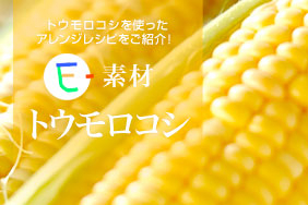 E-素材 トウモロコシ