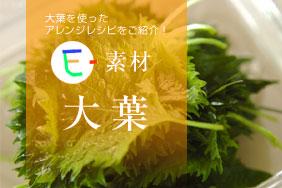 E-素材 大葉