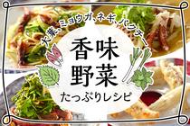 「香味野菜」が主役のレシピ。乗せるだけで食卓が華やかでおいしくなる香味野菜をたっぷり使ったレシピをご紹介します。