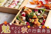 インスタ映え抜群のお弁当で大人気のインスタグラマー直伝!
