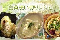 みずみずしい低カロリーな旬の白菜をいろんな味で楽しむ!