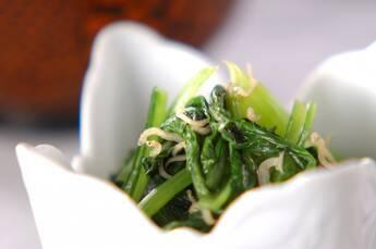 小松菜のジャコ和え