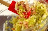 キャベツとツナのサラダの作り方1