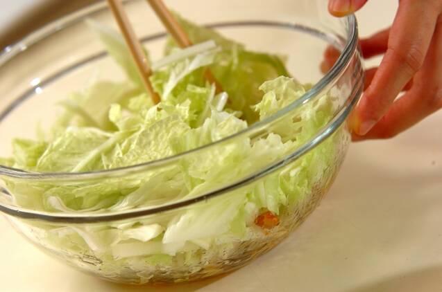 サッパリ白菜のゴマ油がけの作り方の手順2