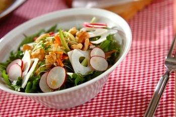 野菜たっぷりのサラダ