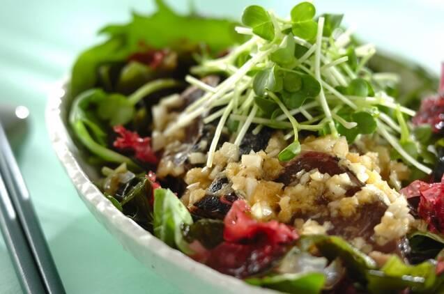 初夏に食べたいカツオと海藻のサラダ