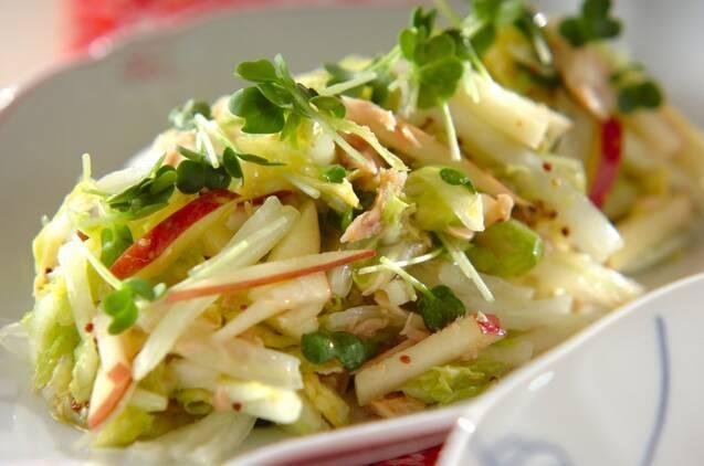 白いお皿に盛られた白菜とツナとりんごのマスタードサラダ