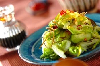 白菜のお漬け物