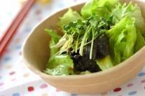 ワカメと貝われ菜のグリーンサラダ