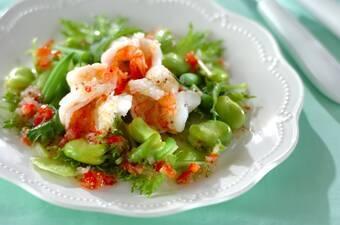 エビとソラ豆のグリーン・サラダ ソースラビゴット