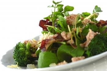 クレソンとブロッコリーのグリーン・サラダ ツナのビネグレットソース