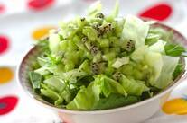 キウイドレッシングのグリーンサラダ