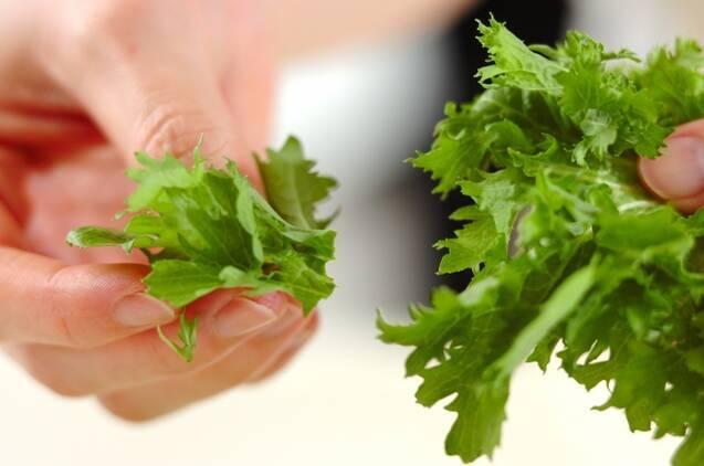 ワサビ菜チョレギサラダの作り方の手順1