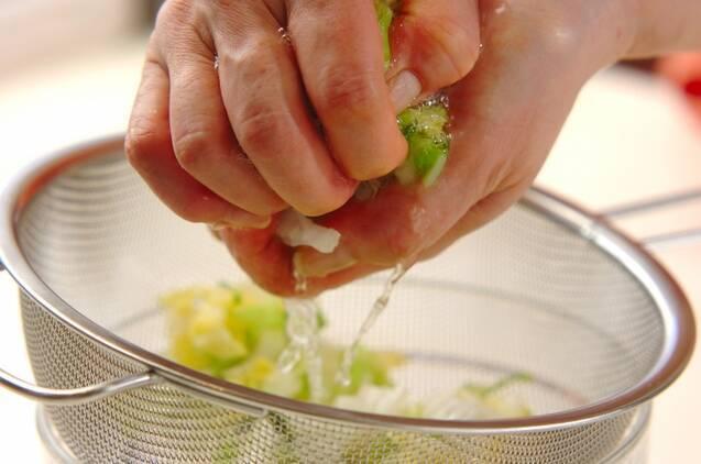白菜とツナのおひたしの作り方の手順1