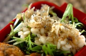 水菜とチリメンジャコのサラダ