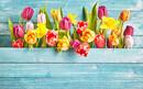 あなたの今の美しさを「花」に例えると?