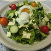 温泉卵のせサラダ