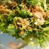 レタスとミョウガのサラダ