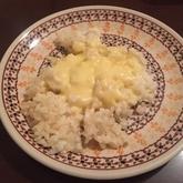 かんたん水炊き+リゾット風雑炊
