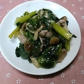 チンゲンサイの炒め煮