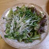 サニーレタスのシンプルサラダ