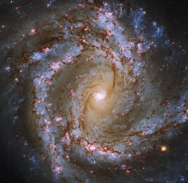 おとめ座の渦巻銀河M61 〜 ハッブルの今週の1枚 (2021年4月5日 ...
