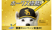 PayPay プロ野球ソフトバンクホークス優勝で10万円相当プレゼント